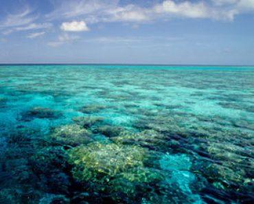 http://www.touristspots.org/wp-content/uploads/2010/01/Great-Barrier-Reef-370x297.jpg