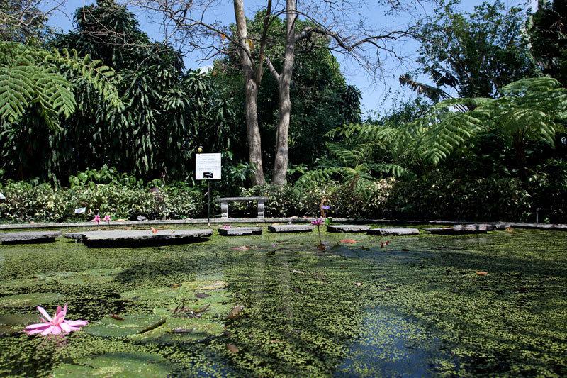 La Laguna Botanical Garden In San Salvador El Salvador
