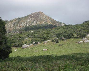 http://www.touristspots.org/wp-content/uploads/2011/05/Gorongosa-National-Park-370x297.jpg