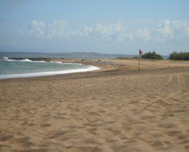 http://www.touristspots.org/wp-content/uploads/2011/05/Isla-de-Gorriti-370x297.jpg