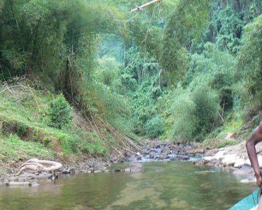 http://www.touristspots.org/wp-content/uploads/2011/05/Navua-River-370x297.jpg