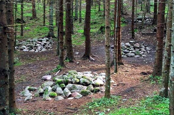 Pasaules un Latvijas apceļošana - vietas kur esam bijuši Pokaini-Forest